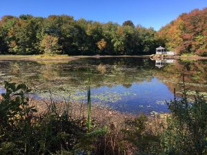 Signs of Drought at Ice House Pond - October 2016